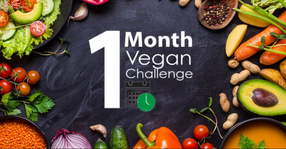 1 Month Vegan Diet Review