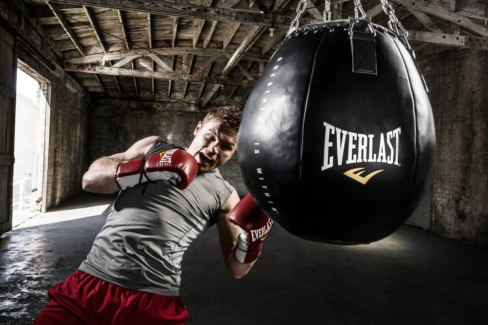 Top 10 Best Uppercut Punching Bags Review