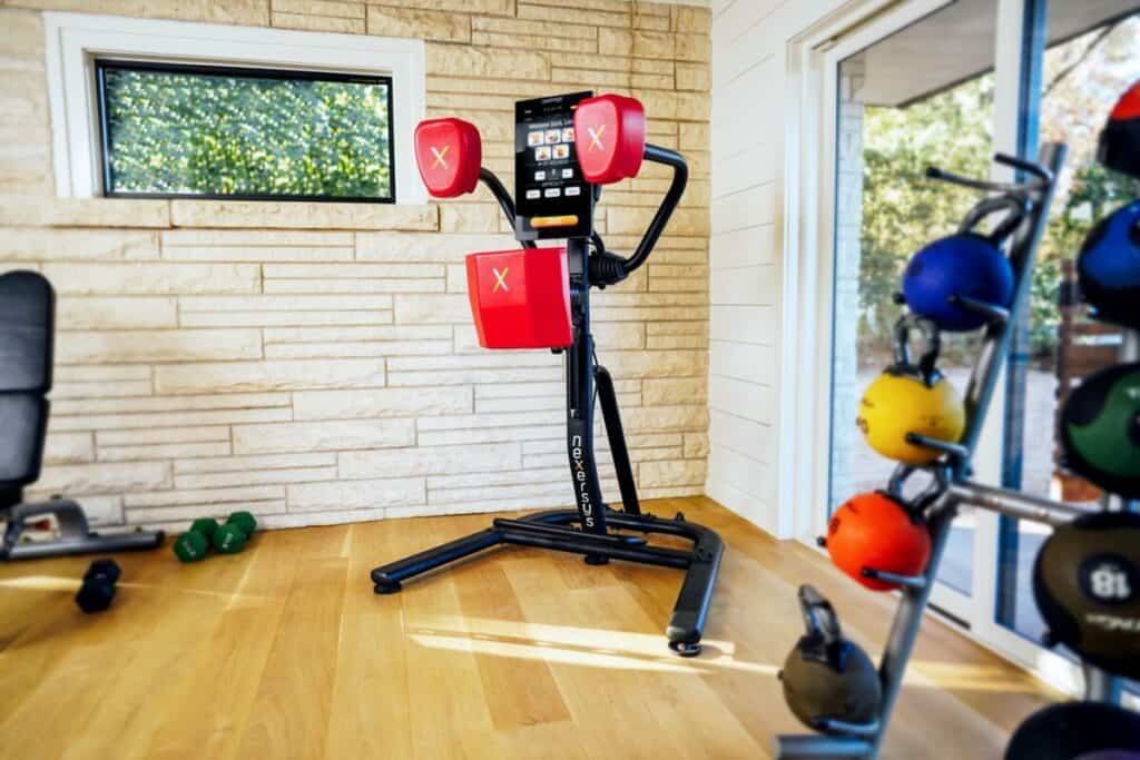 NEXERSYS N3 Elite BOXING TRAINER SYSTEM REVIEW